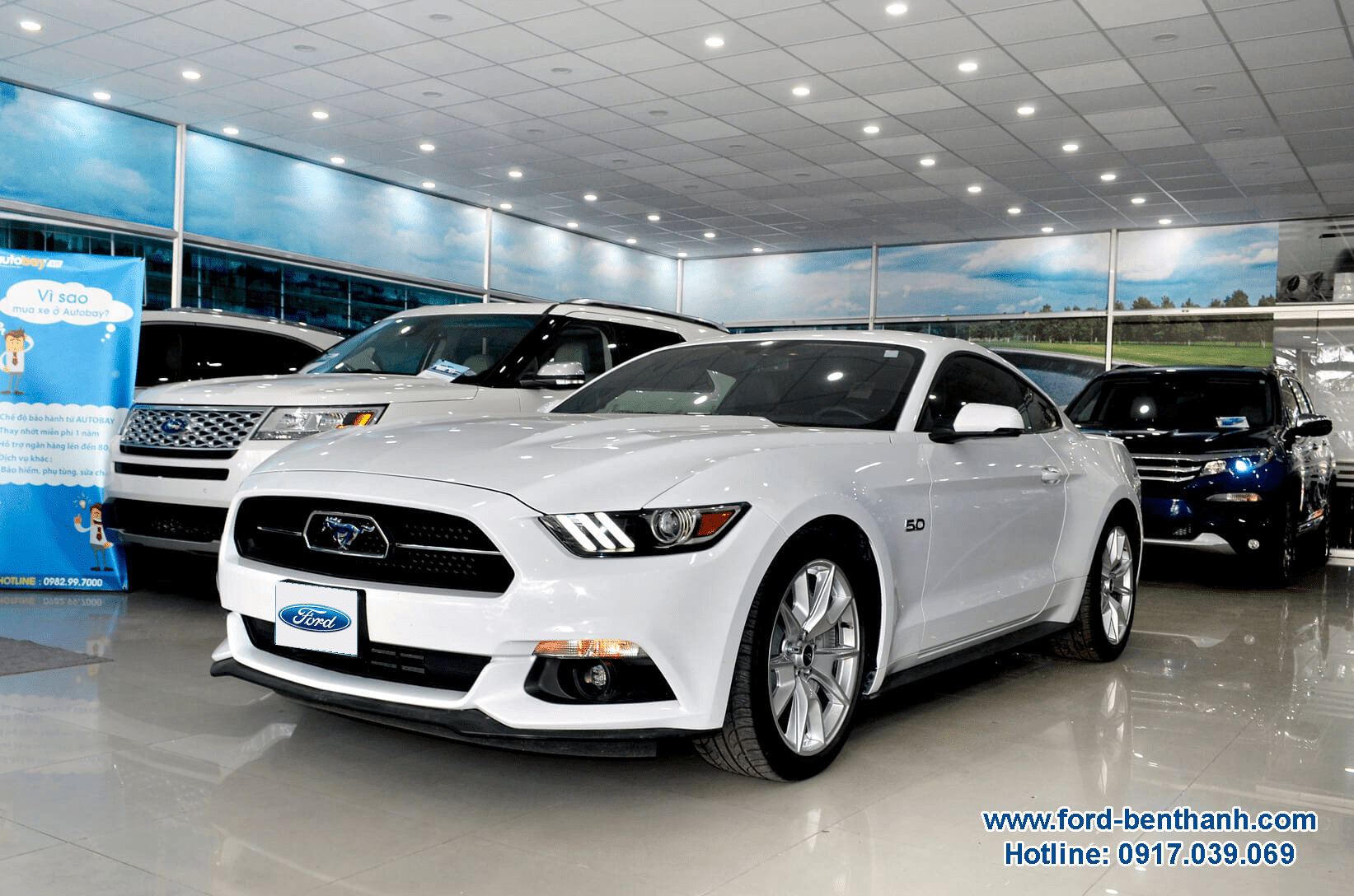 Ford Mustang Xe