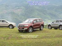 xe-ford-everest-titanium-dang-cap-doanh-nhan-04